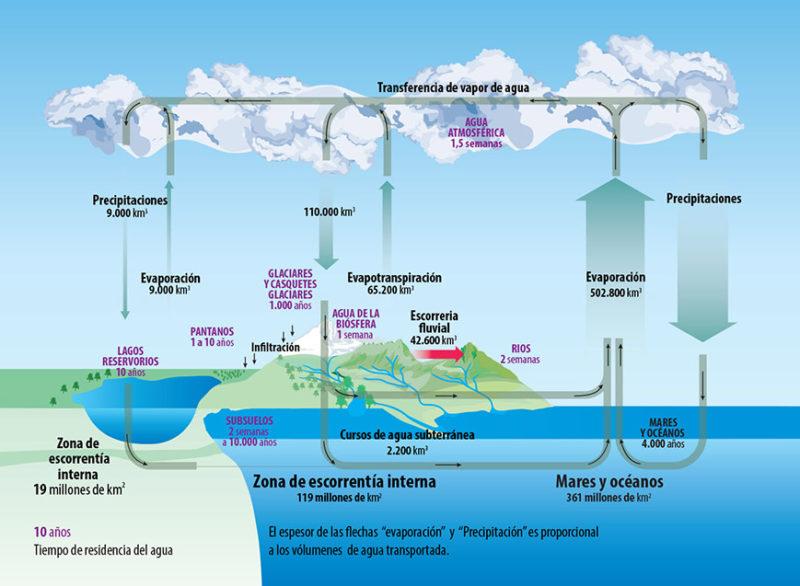 ciclo agua ciencia2 800x586 - Agua