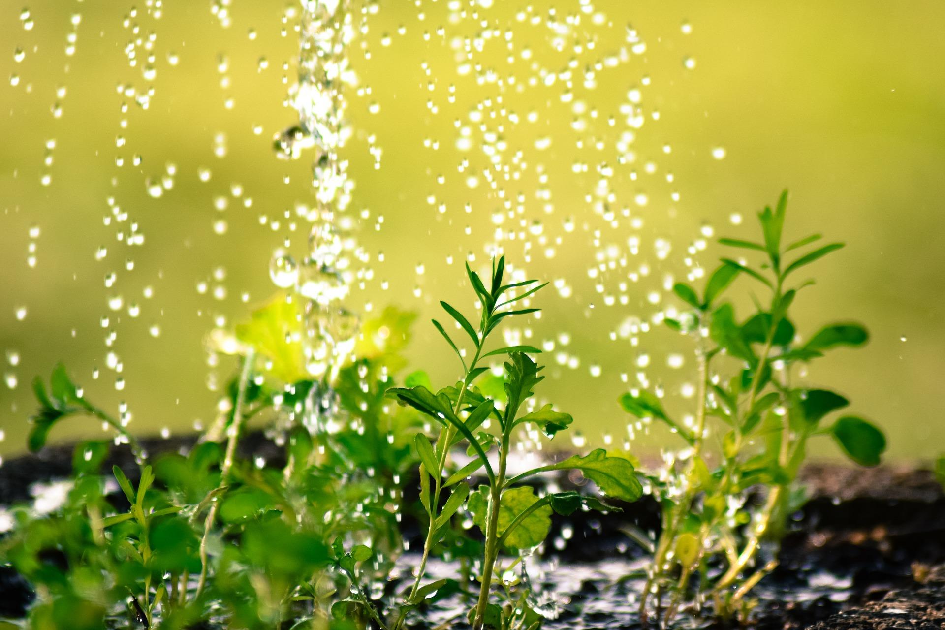 drop of water 2342870 1920 - Inicio